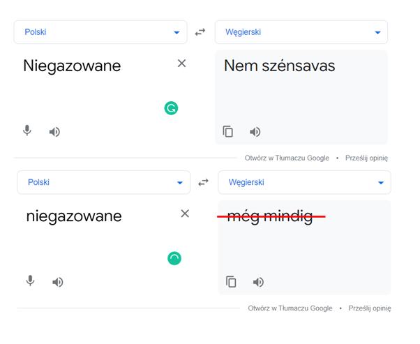 Obraz1 - Tłumaczenie maszynowe – wady izalety